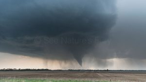 A magnificent supercell with mesocyclone and tornado
